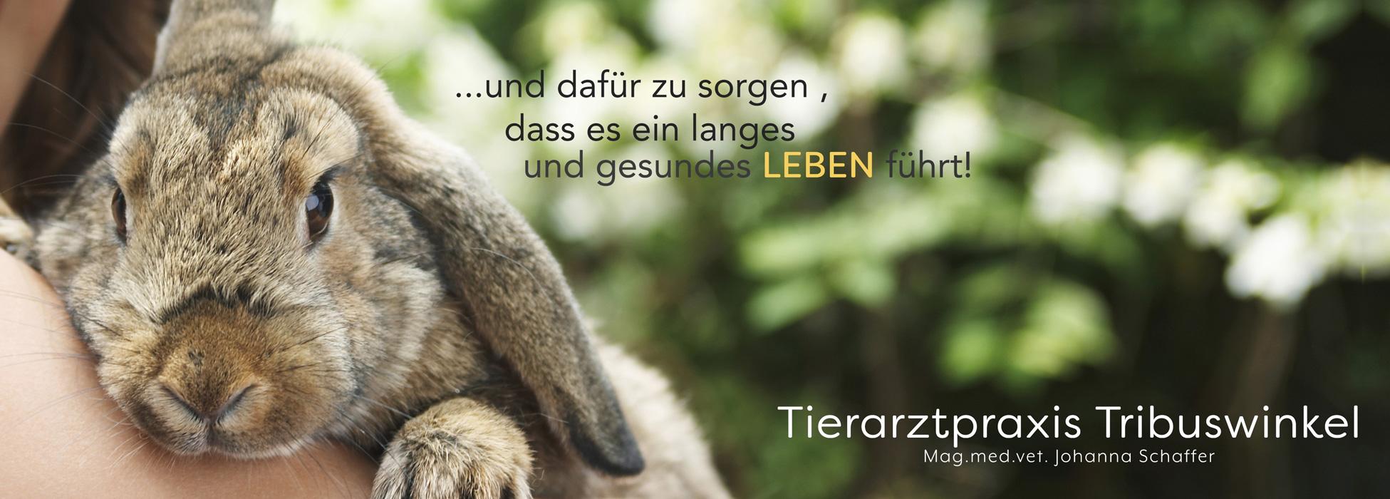 Tierarztpraxis Tribuswinkel